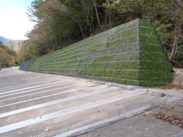 道路橋りょう整備(再復)工事(災害防除)