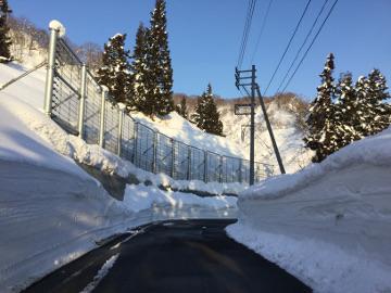 一般国道291号防災安全(雪寒)小松倉せり出し防止柵設置工事
